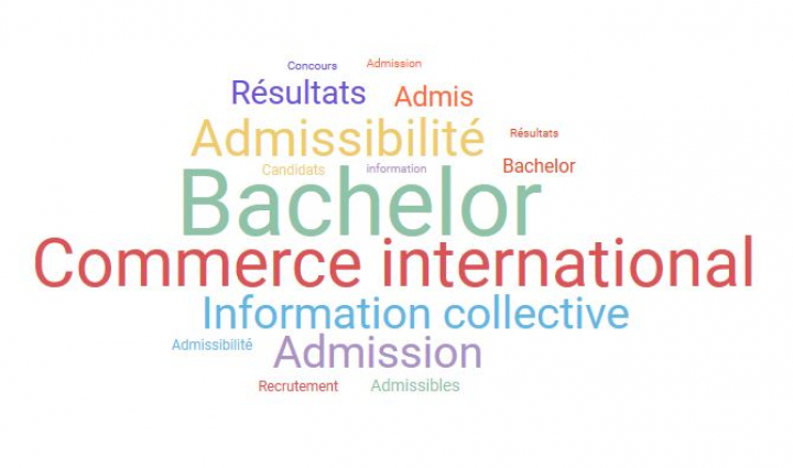 Bachelor Commerce International